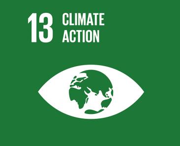 E_SDG goals_icons-individual-rgb-13_new